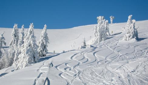 Kärntner Skischule mit Herz